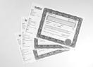 Certificats d'actions vierges avec texte